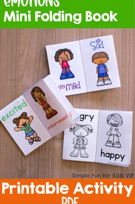 Emotions Mini Folding Book