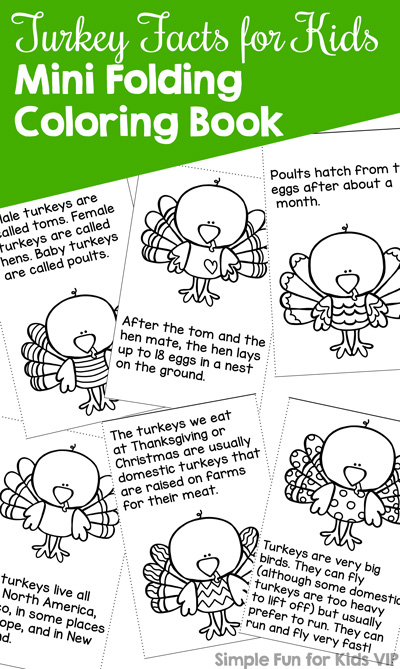 Learn and have fun with this cute Turkey Facts for Kids Mini Folding Coloring Book! Made from a single page with no gluing or stapling, perfect for a quick literacy activity for kindergarteners and first graders.