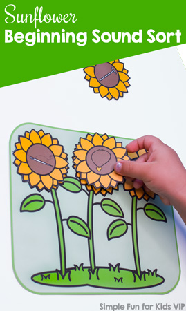 Practice letter recognition and beginning sounds with kindergarteners and this cute, simply Sunflower Beginning Sound Sort! Includes uppercase, lowercase, and mixed case letters, accountability worksheets, and labels for easy storage.